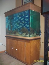 fish tank 110 gallons/everything is included in New Lenox, Illinois